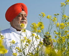Chef Manjit Gill: Culinary Artist, Explorer and Trailblazer